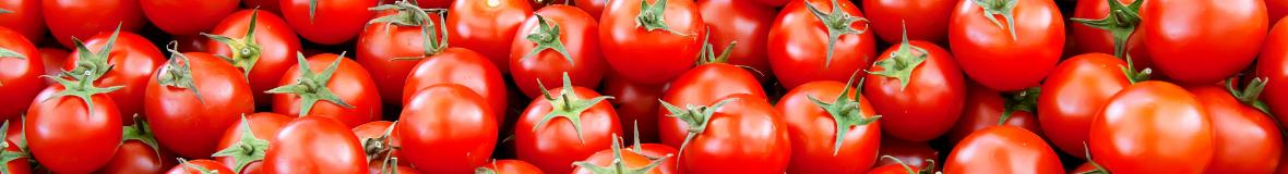 Epépineuses, presses-tomates
