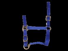 Licol nylon haut de gamme cheval bleu