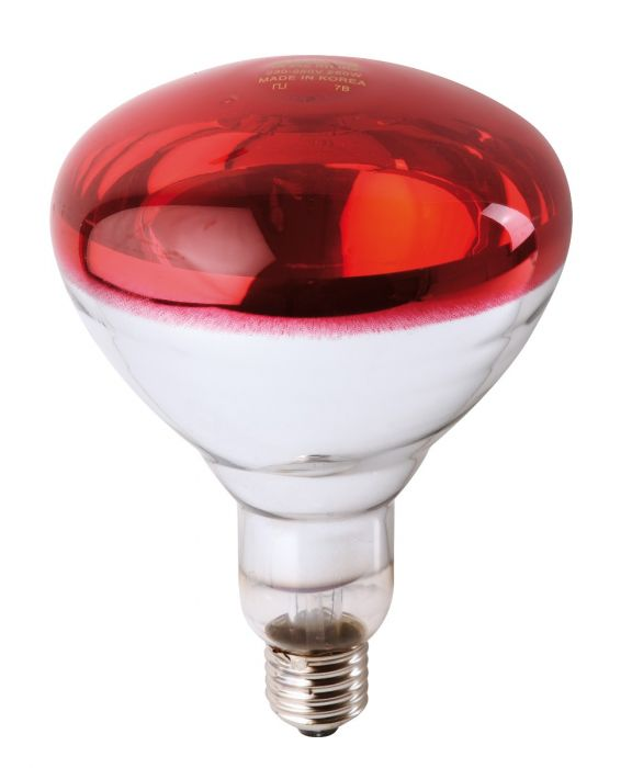 Ampoule PHILIPS IR à vis rouge 150W