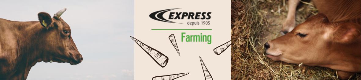 Express Farming, écornage, épilation thermique