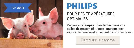 Gamme de lampes chauffantes Philips pour porcs